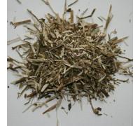 Цикорий (трава) - 50 гр.