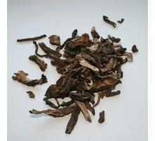 Дягиль (корень) - 50 гр.