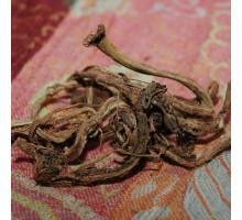 Копеечник чайный (красный корень) - 50 гр.