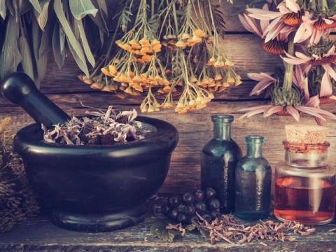 Лекарства адаптогены для здоровых