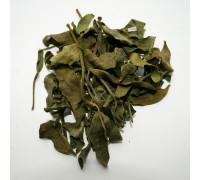 Омела белая (трава) - 50 гр.