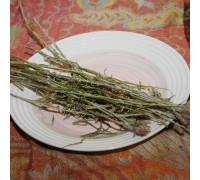 Соссюрея иволистная (трава) - 50 гр.