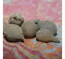 Терминалия баллерическая (плоды) - 50 гр.