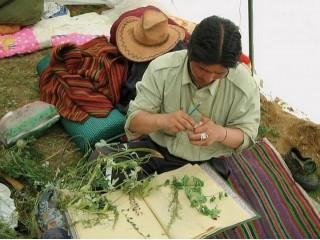 Тибетские лекарства на основе целебных трав